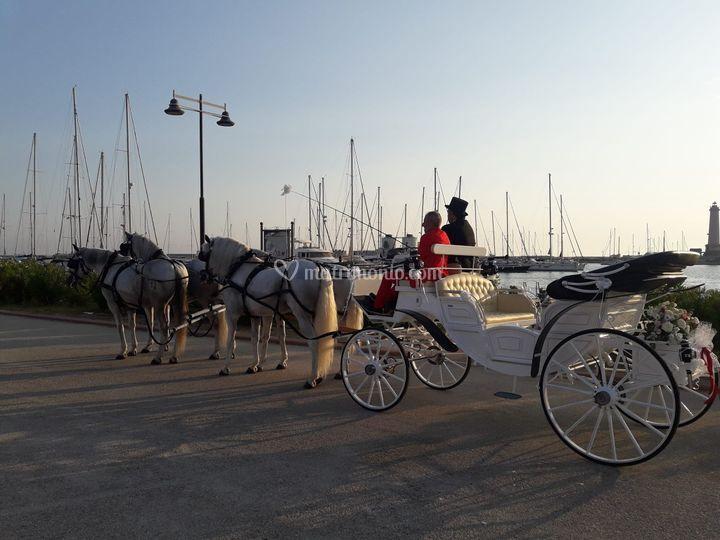 Carozza con 4 cavalli bianchi