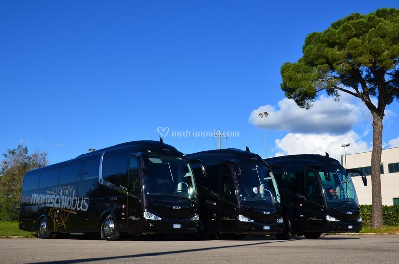 Maraschio Bus