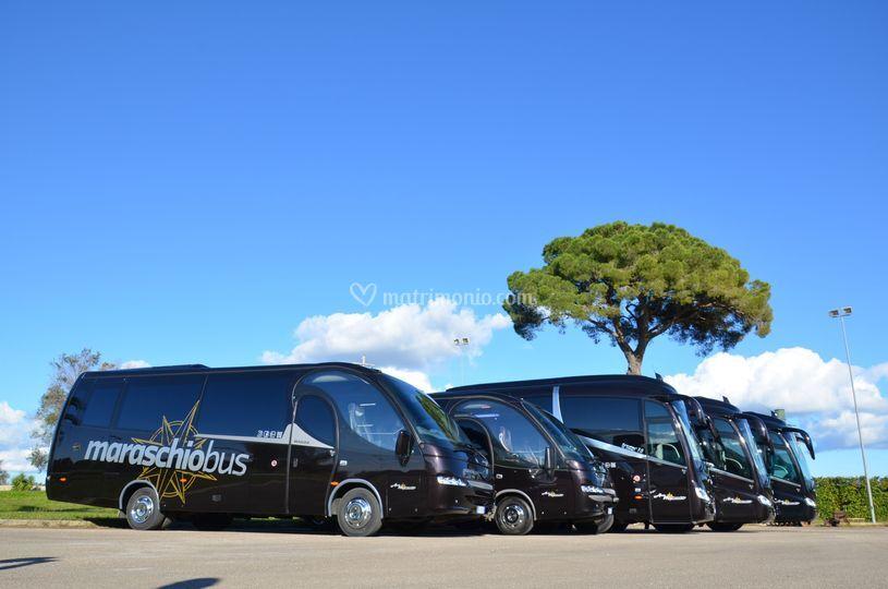 Flotta bus gran turismo