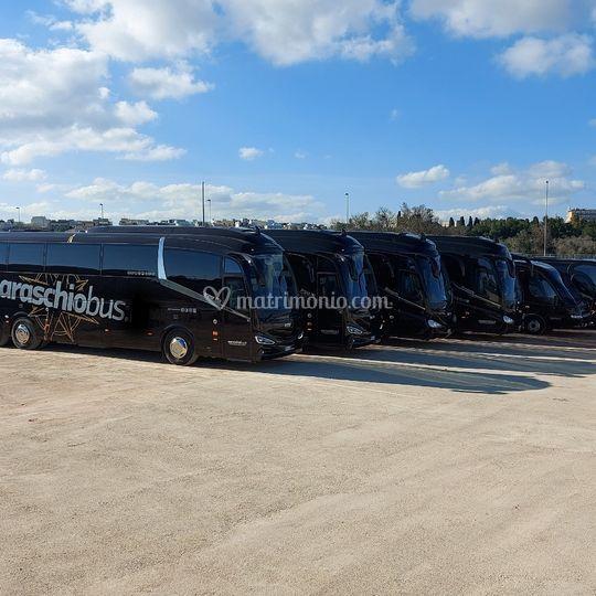 Bus Lecce
