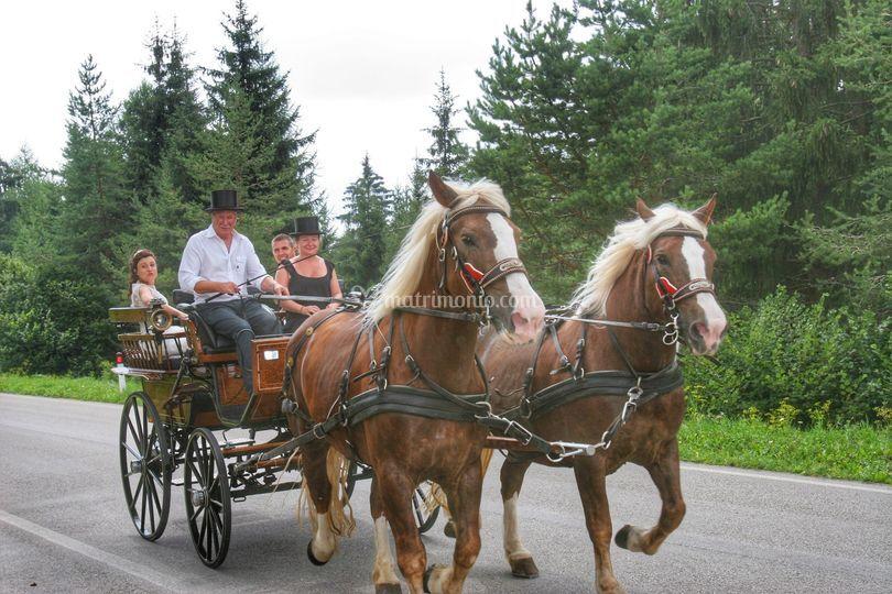 Servizio carrozza con cavalli