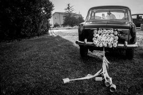 Zucchero Wedding