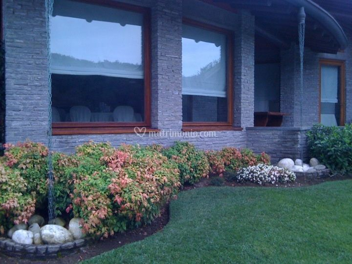 Angolo verde vetrate