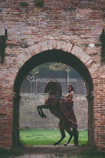 Laura Magic Horse Show