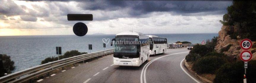 L'arrivo dei nuovi bus