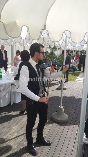 Violinista buffet