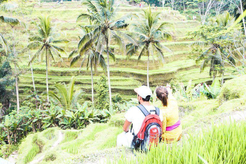 Risaie di Tegalalang - Bali