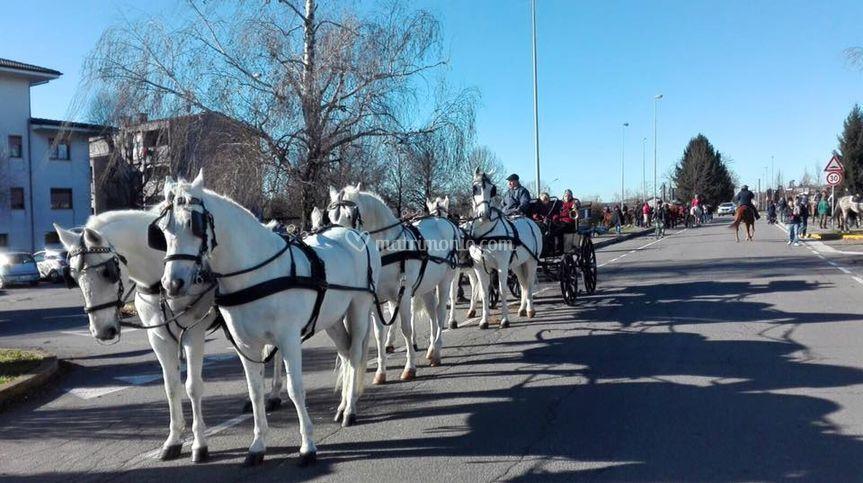 Carrozza con sei cavalli