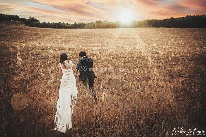 Sposi nel campo di grano