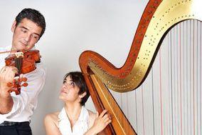 Shiny Duo Arpa Violino