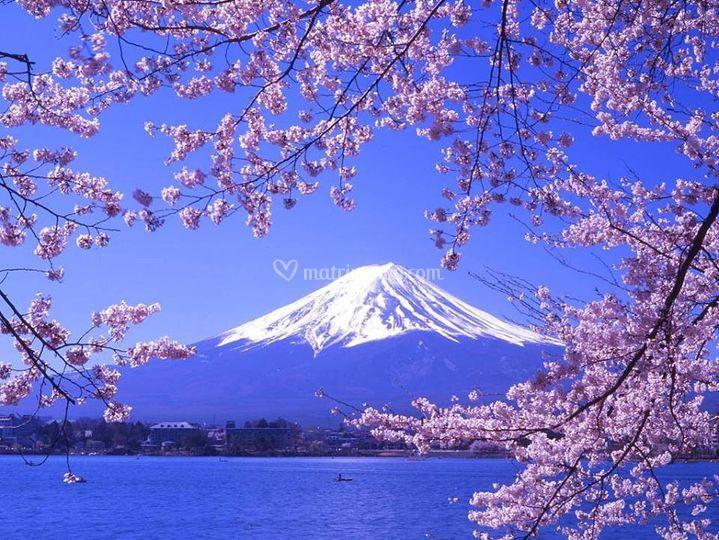 Giappone, MonteFuji