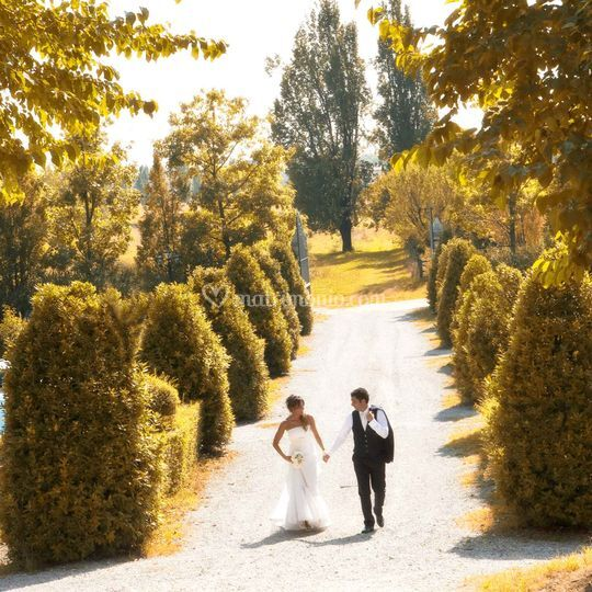 Viale degli sposi