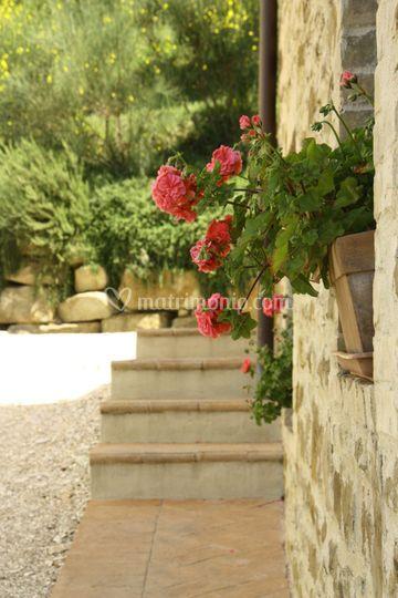 Assisi resort - Agriturismo la tavola dei cavalieri ...