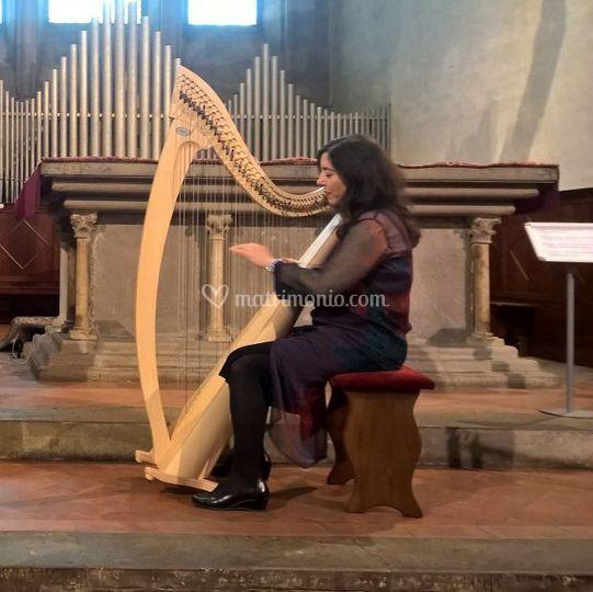 Nella chiesa di san Domenico A