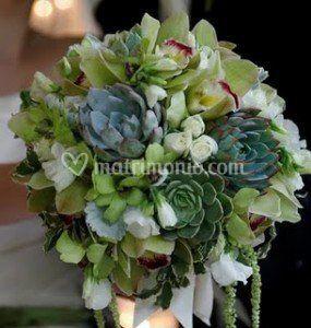 Bouquet fiori e piante
