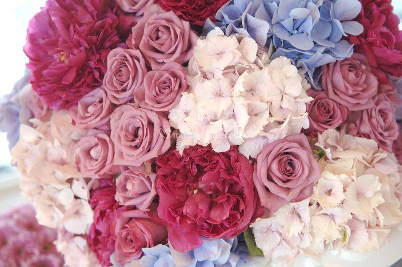 Ortensie, peoni e rose