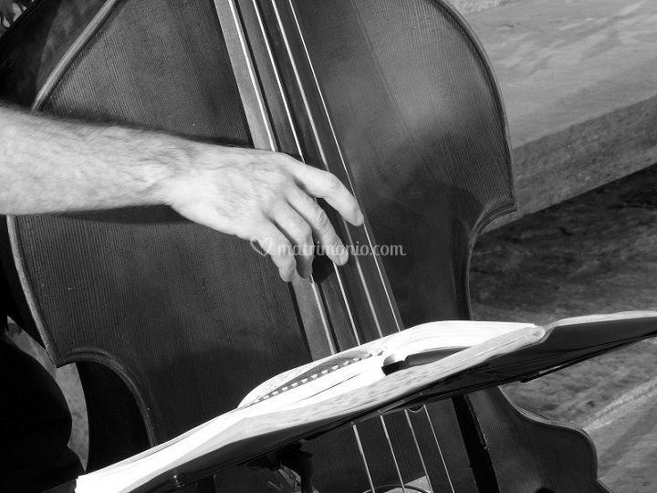 Ariel Jazz Contrabbasso