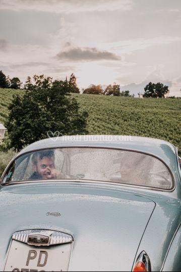 In Jaguar tra le vigne