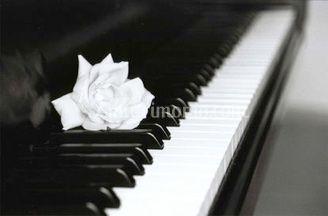 Musica per sposi