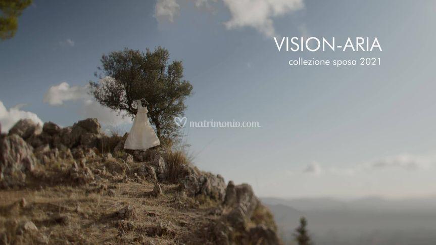 Vision-aria 2021