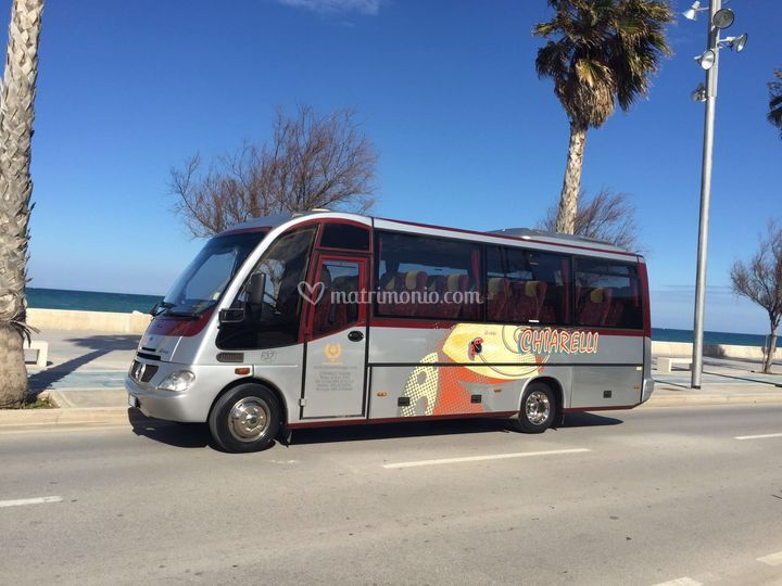 Minibus beluga