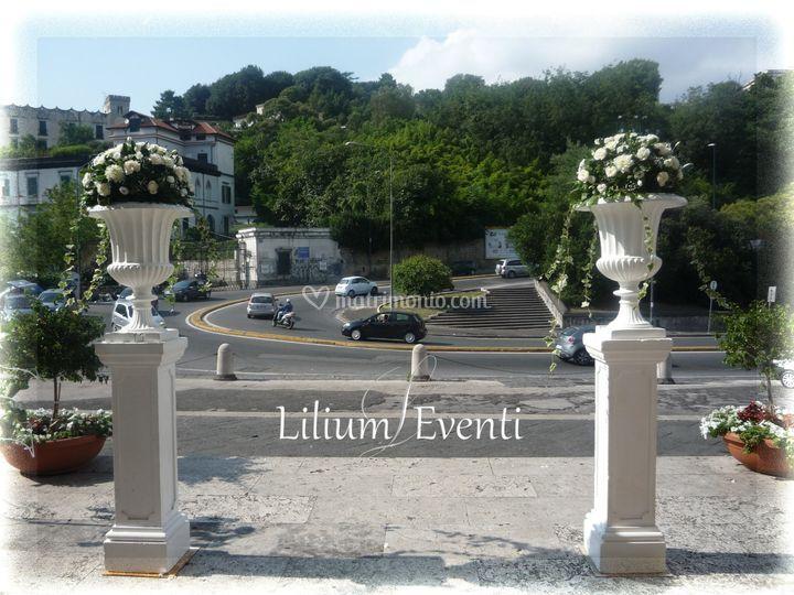 Lilium Eventi