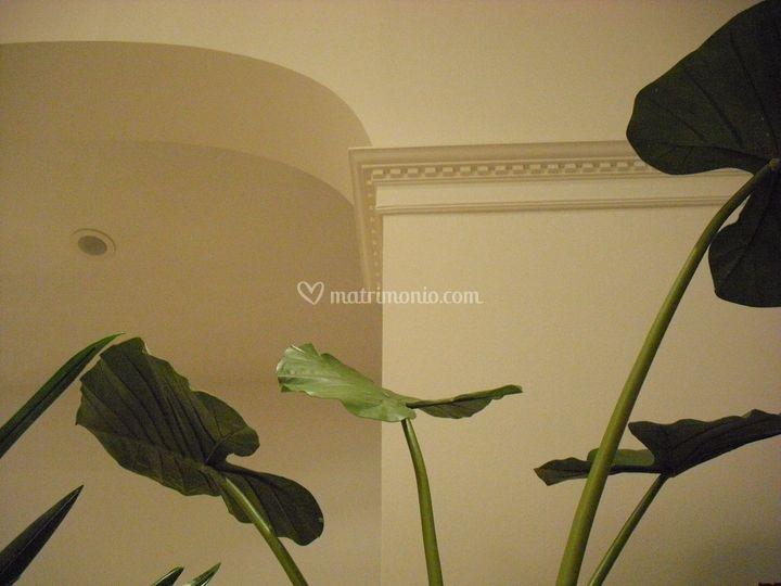 Glea  fiori - complementi - decori