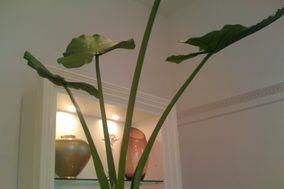 Glea fiori -complementi - decori
