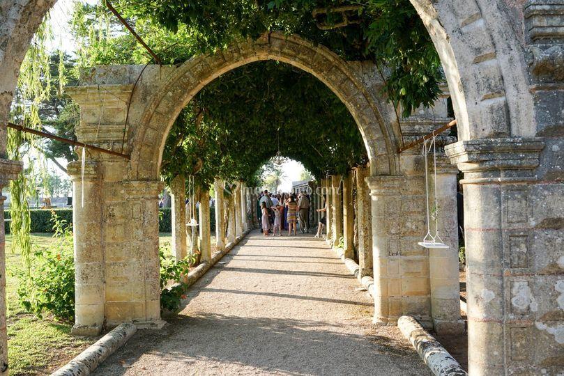 Arco del glicine