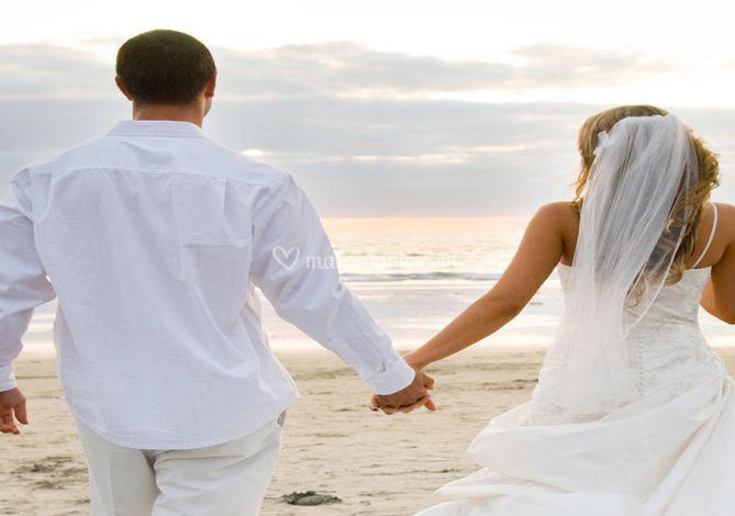 Matrimonio Sulla Spiaggia Bacoli : Ristorante calamoresca beach