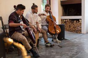 Shutter Acoustic Trio
