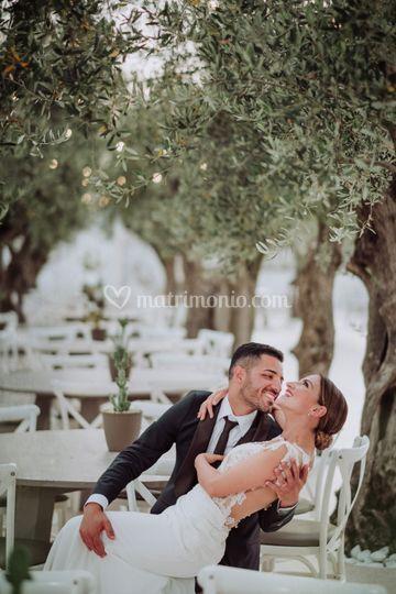 In Love tra gli ulivi