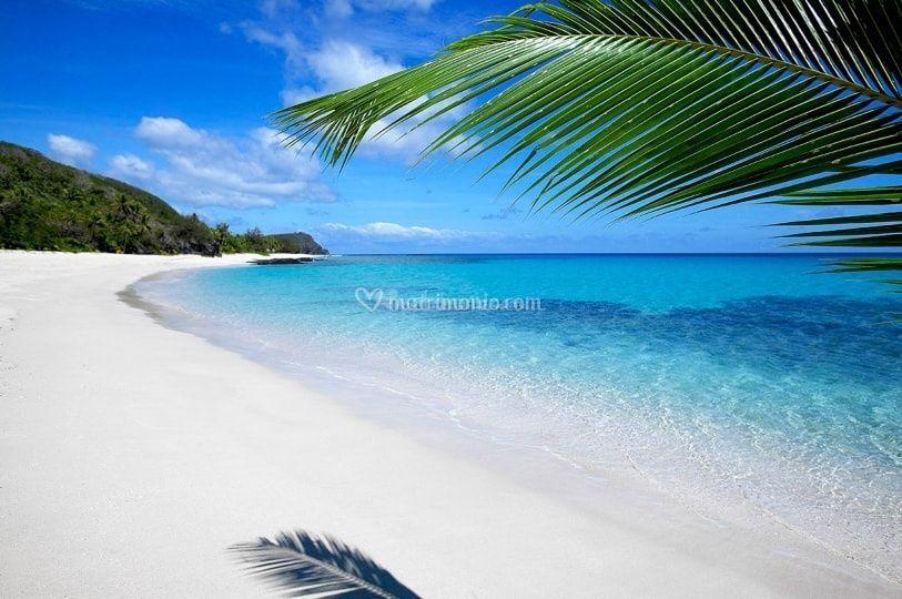 Le Fiji