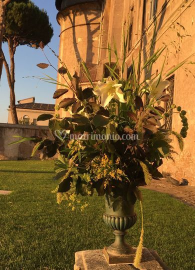 Matrimonio Istituto Romano : Istituto di studi romani di fiori e altro mgv foto