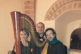 Albino Migliozzi Music Events