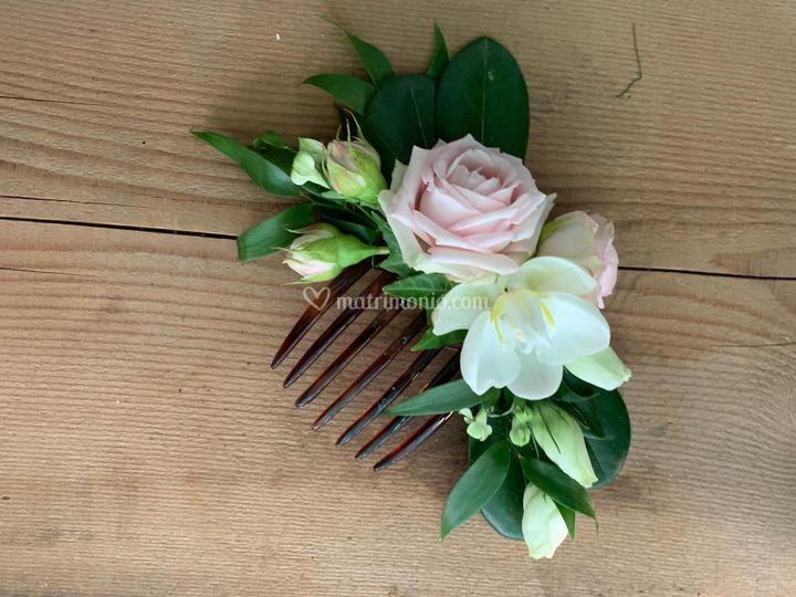 Pettinino fiori