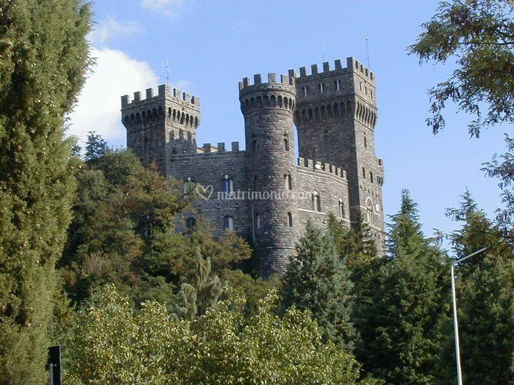Il castello visto dal bosco de