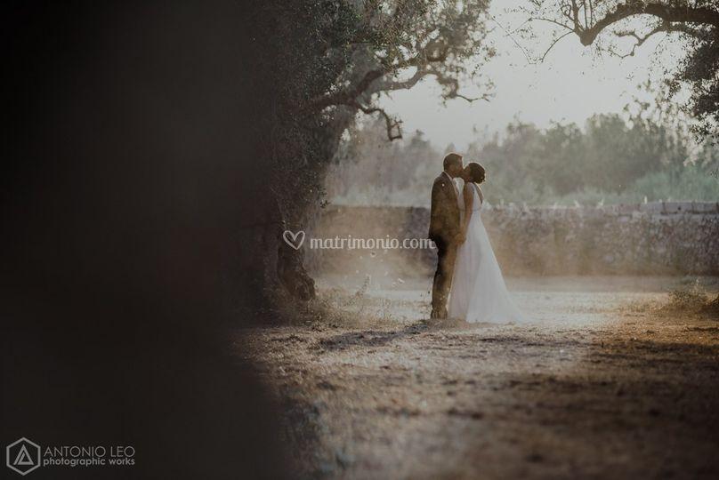 Antonio Leo Photographic Works