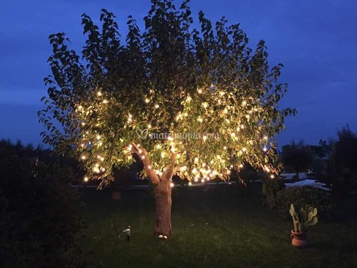Illuminazione di casale del murgese foto 22