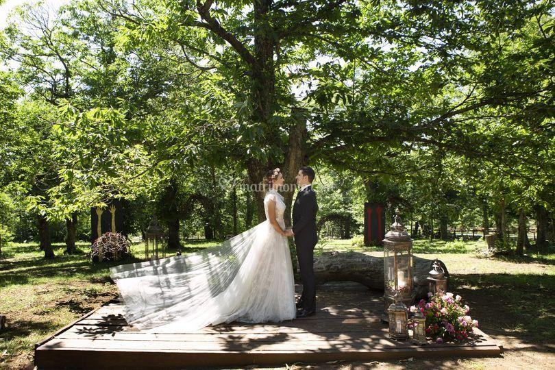 QDC Wedding