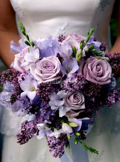 Violet mix