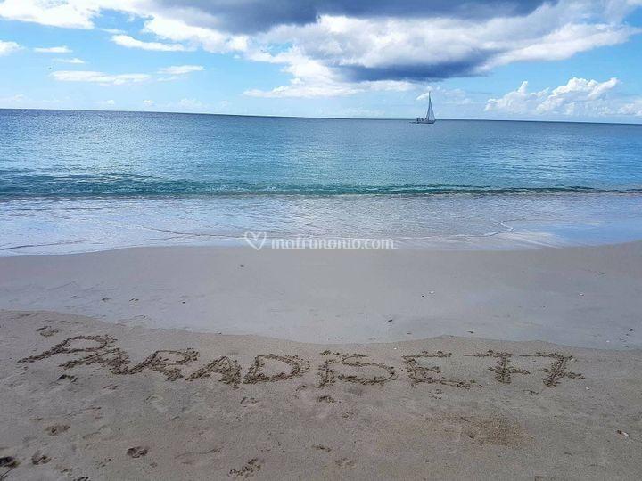 Paradise77 ad Antigua
