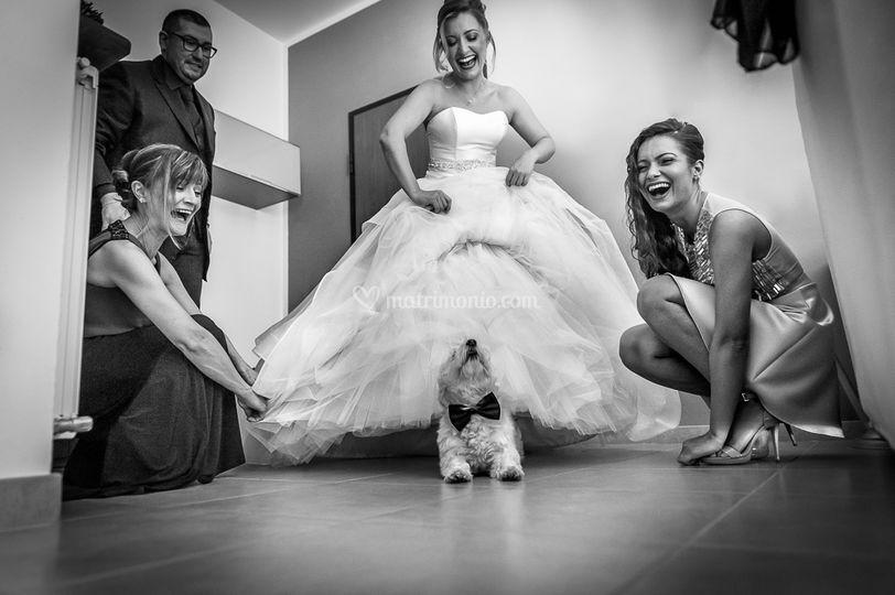 La Sposa ed il suo cagnolino