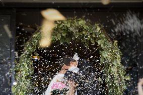 Dionea Wedding