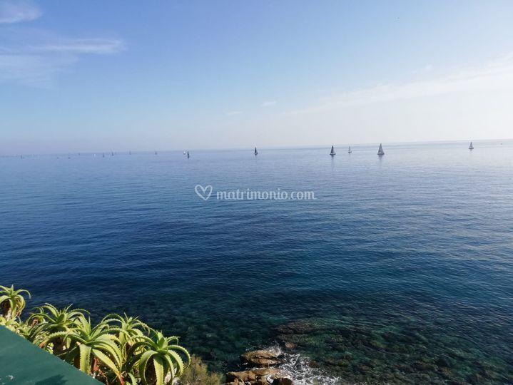 Luxury Oasis Sea View