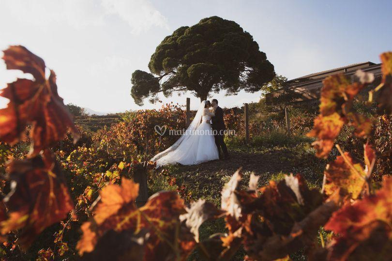 Nozze-Catania-autunno