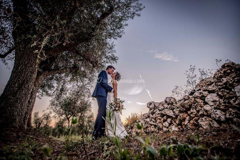 Magenta Wedding Photographers