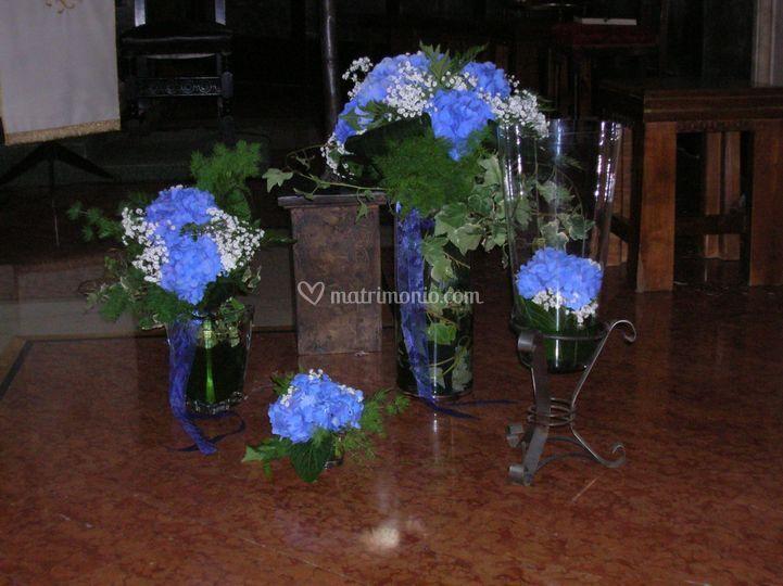Florensia di manu - Ortensia blu ...