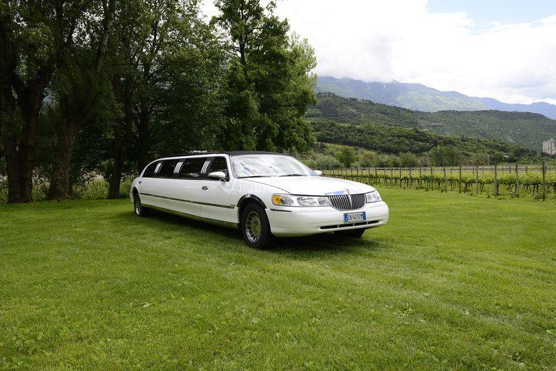 Limousine 8 posti