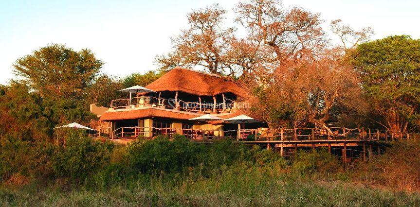 Sudafrica  Safari parco Kruger
